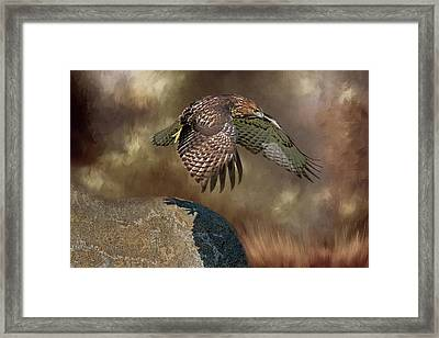 Framed Print featuring the photograph Red Hawk Down by Donna Kennedy
