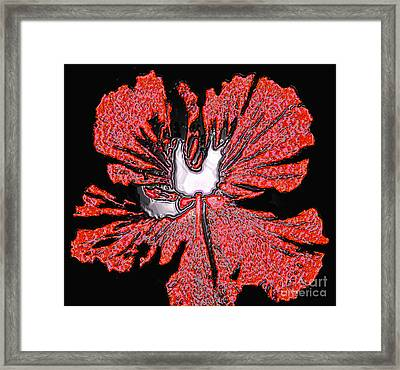 Red Hibiscus Flower In Three Dimensions Framed Print