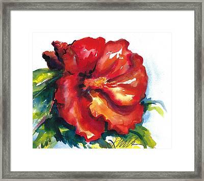 Fireball Red Hibiscus Framed Print