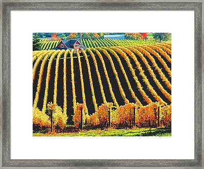 Red Hills Of Dundee Framed Print