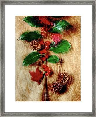 Red Holly Spinning Framed Print
