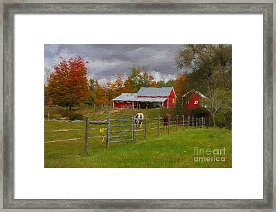 Red Horse Barn Framed Print