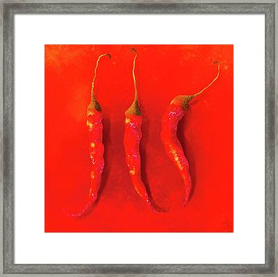 Red Hot Chili Pepper II Framed Print