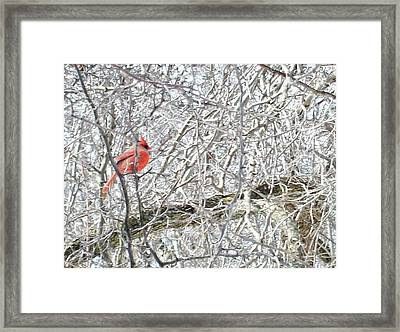 Red In White Framed Print by Justin  Randy