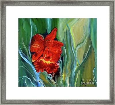 Red Jungle Orchid Framed Print