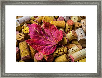 Red Leaf On Wine Corks Framed Print by Garry Gay