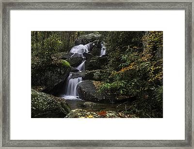 Red Leaf Waterfalls Framed Print