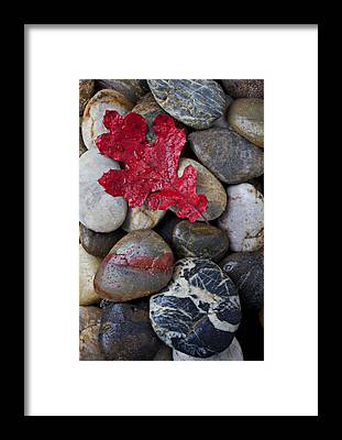 Colorful Rocks Framed Prints
