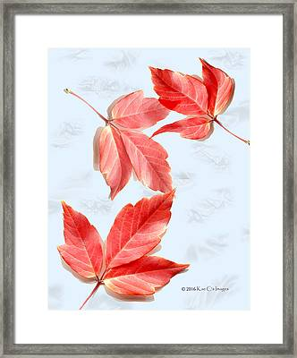 Red Leaves On Blue Texture Framed Print