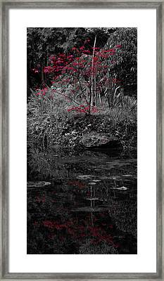 Framed Print featuring the photograph Red Leaves Reflected by Scott Lyons