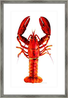 Red Lobster - Full Body Seafood Art Framed Print by Sharon Cummings