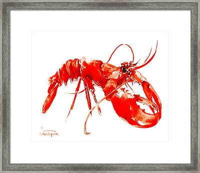 Red Lobster Framed Print