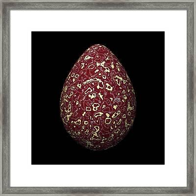 Red Marble Egg Framed Print by Hakon Soreide