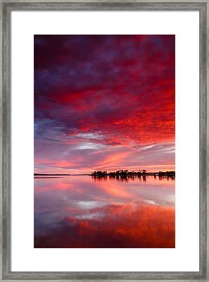 Red Morning Framed Print