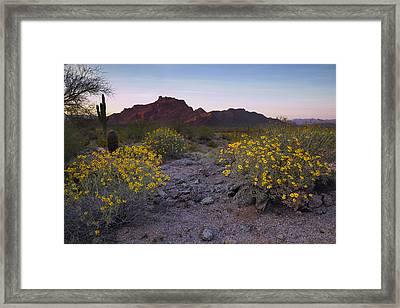 Red Mountain Dusk Framed Print