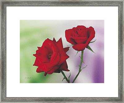 Red Mr. Lincoln Roses Framed Print by Jan Baughman