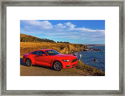 Red Mustang Sonoma Coast Framed Print