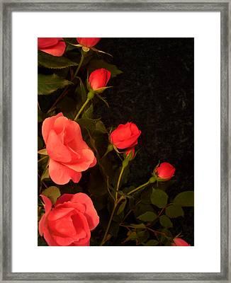 red Framed Print by Nereida Slesarchik Cedeno Wilcoxon