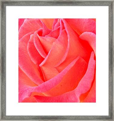 Red No More Framed Print by Gwyn Newcombe