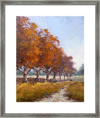Red Oak Avenue Framed Print by Yvonne Ankerman