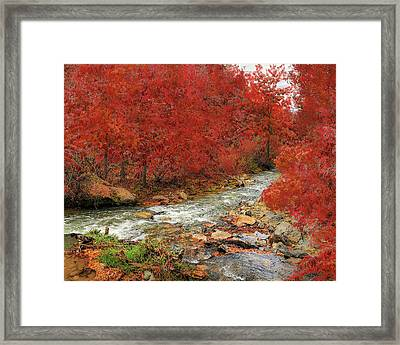 Red Oak Creek Framed Print