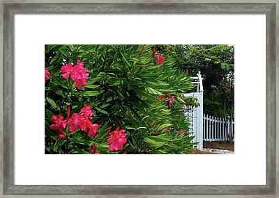 Framed Print featuring the photograph Red Oleander Arbor by Marie Hicks