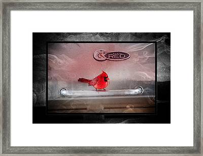 Red On Red Framed Print by Ericamaxine Price