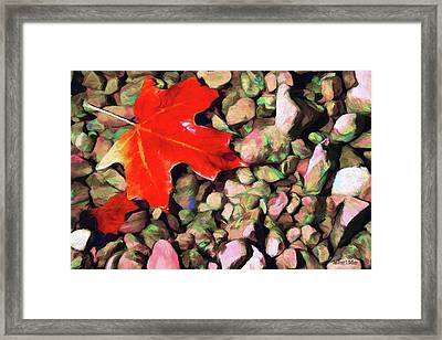 Red On The Rocks Framed Print by Jeff Kolker
