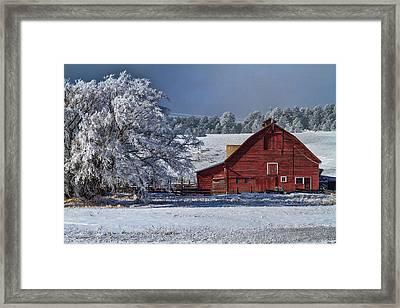 Red On White Framed Print