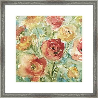 Red Orange And Yellow Ranunculus Framed Print by Beverly Brown