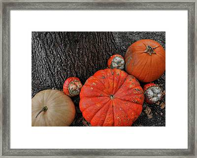 Red Orange Framed Print by JAMART Photography