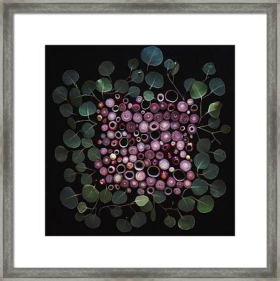 Red Pearl Onions Framed Print
