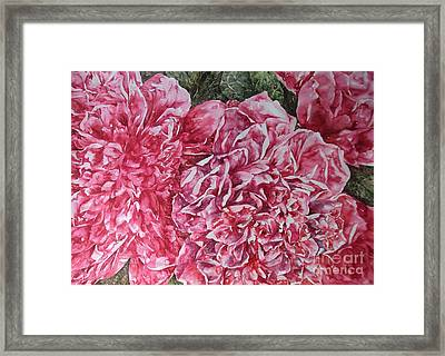 Red Peonies Framed Print