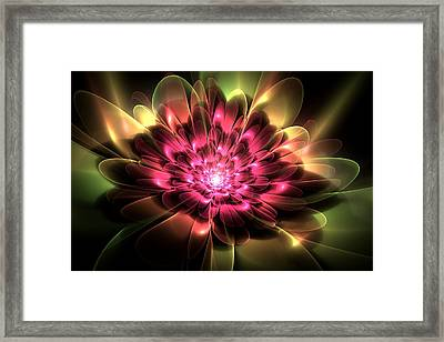 Red Peony Framed Print