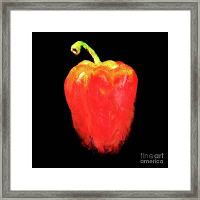 Red Pepper Framed Print by Miri Harvey