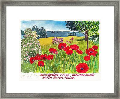 Red Poppies Coastal Maine Island June Garden North Haven  Framed Print by Catinka Knoth