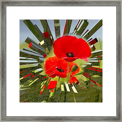 Red Poppies Go Digital Framed Print