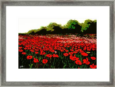 Red Poppies Landscapes Flowers Emerald Isle Multimedia Fine Art Framed Print by G Linsenmayer