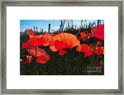 Framed Print featuring the photograph Red Poppy Flowers In Grassland by Jean Bernard Roussilhe