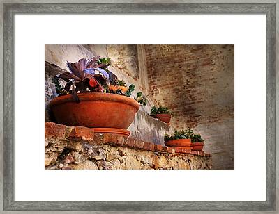 Red Pot Framed Print