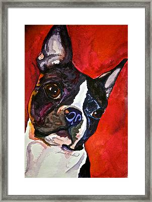 Red Rascal Framed Print by Susan Herber