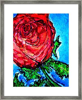 Red Red Rose Framed Print by Laura  Grisham