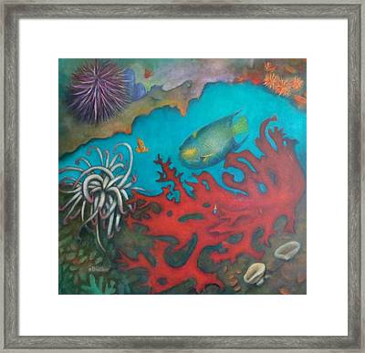 Red Reef Framed Print