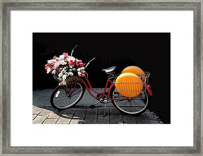 Red Retro Bicycle Framed Print