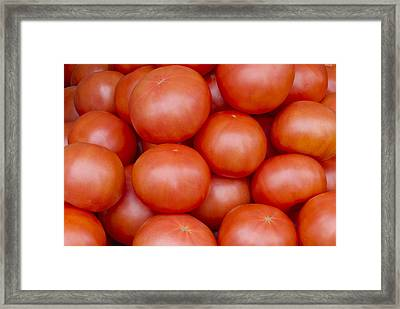 Red Ripe Tomatoes Framed Print by John Trax