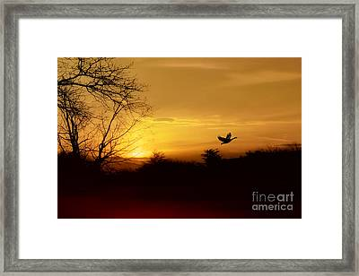 Red River Sunset Framed Print