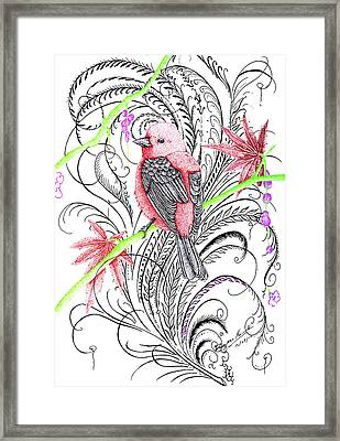 Red Robin Framed Print by Dwayne  Hamilton
