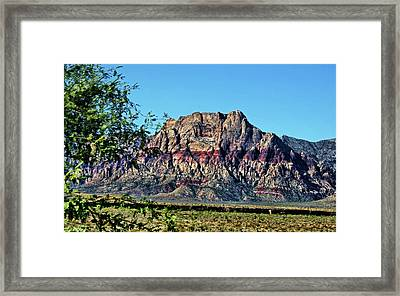 Red Rock Canyon Framed Print by Judy Vincent