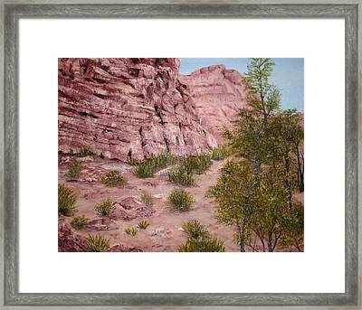 Red Rock Trail Framed Print by Roseann Gilmore