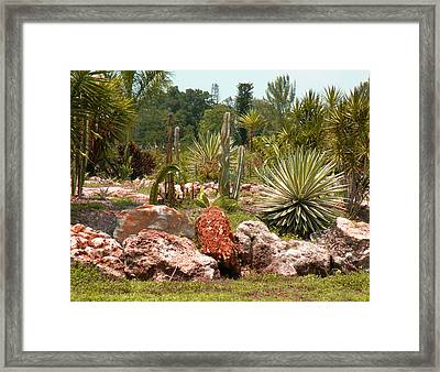 Framed Print featuring the photograph Red Rocks And Cacti by Rosalie Scanlon